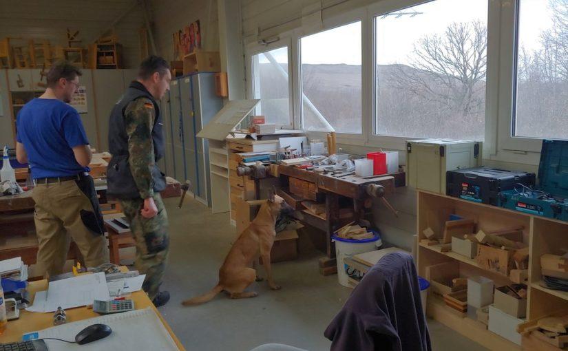 Spreng- und Rauschgiftspürhunde absolvieren Training bei INUMA
